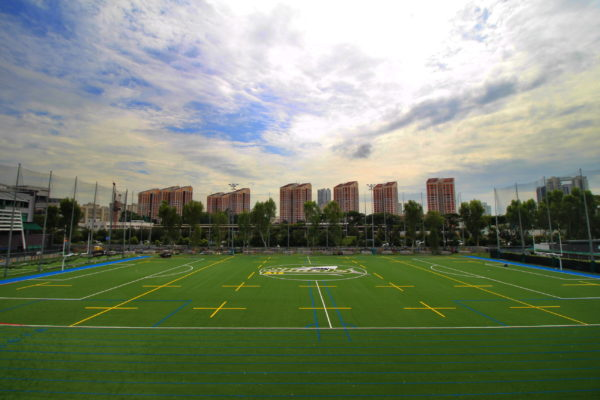 rugby-turf