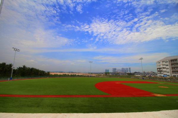 field-turf